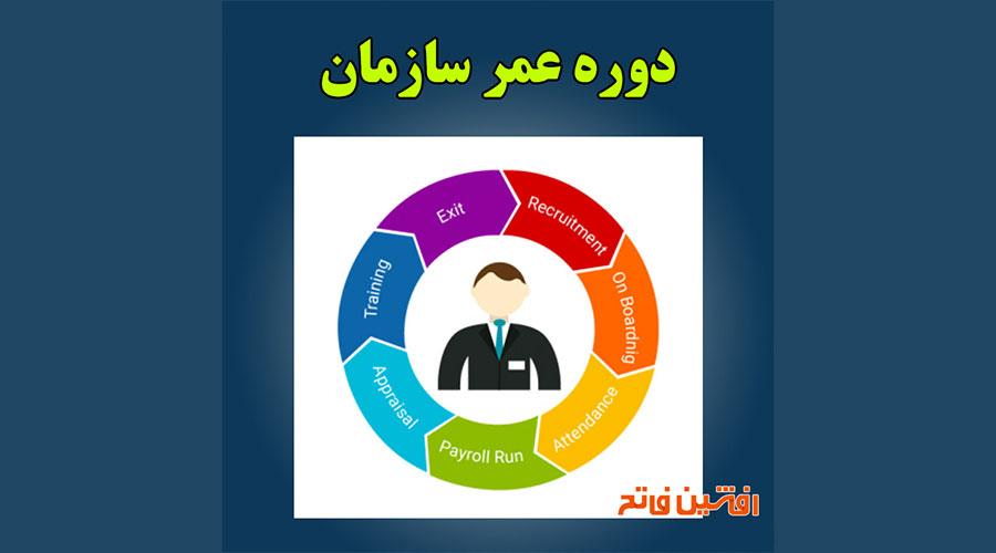 معرفی کتاب دوره عمر سازمان